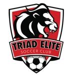 Triad Elite Soccer Club-logo
