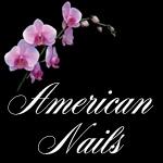 American Nails – Nail and Pedicure care-logo