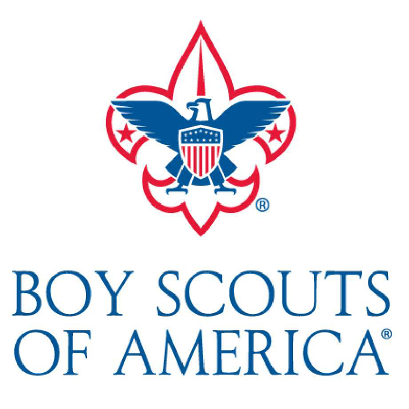 Boy Scouts Troop 265 Logo