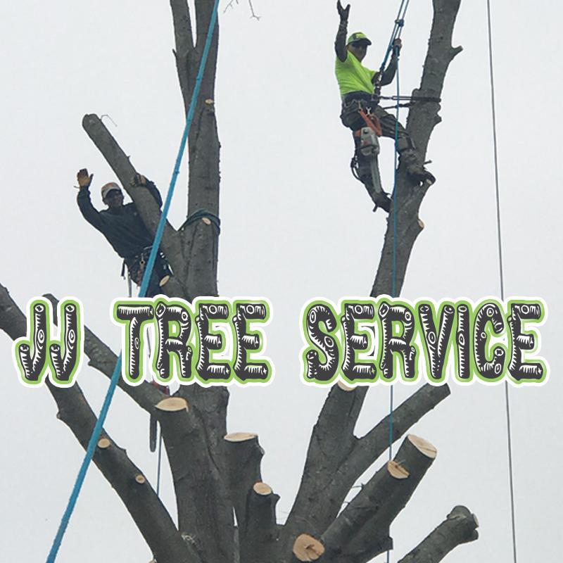 J & J Tree Service-logo