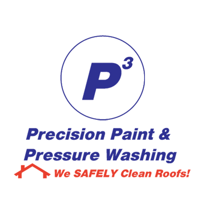 P3 Precision Paint and Pressure Washing-logo